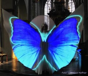 Lady Butterfly 3