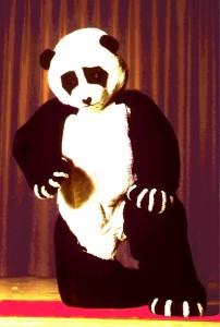 WA Panda 2